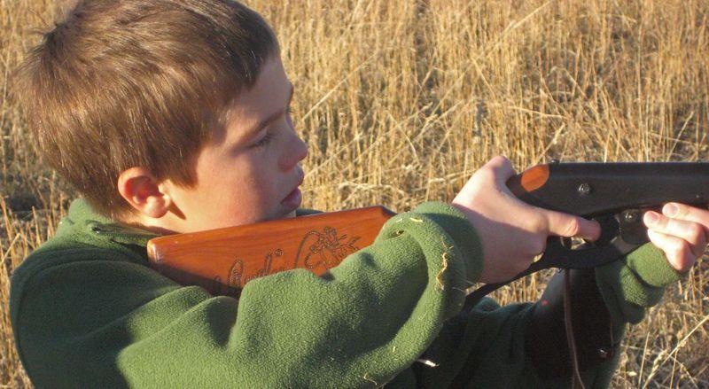 Eli bb gun