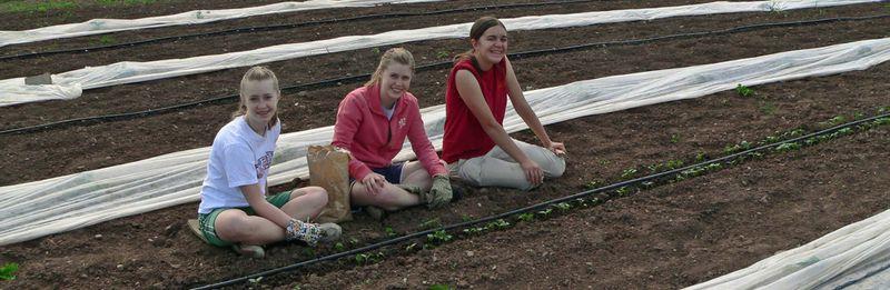 Girls planting beans