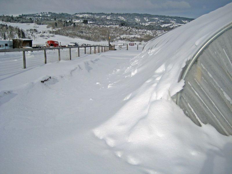 SnowSgh2