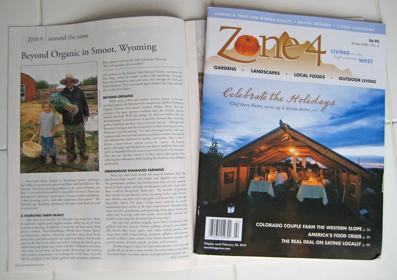 Zone 4 article