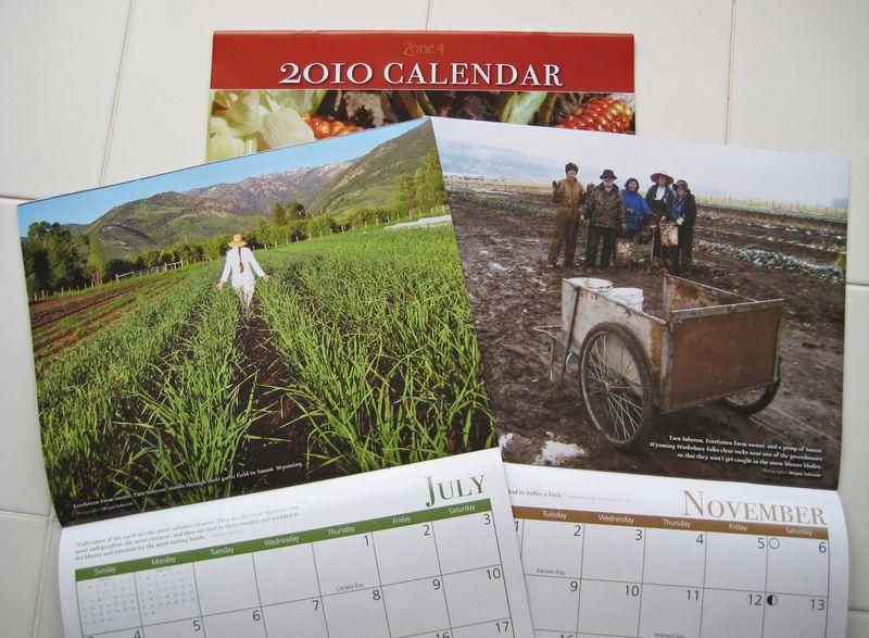 2010 calendar pages