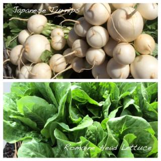 Produce week 4