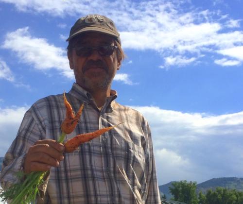 Shain Carrots