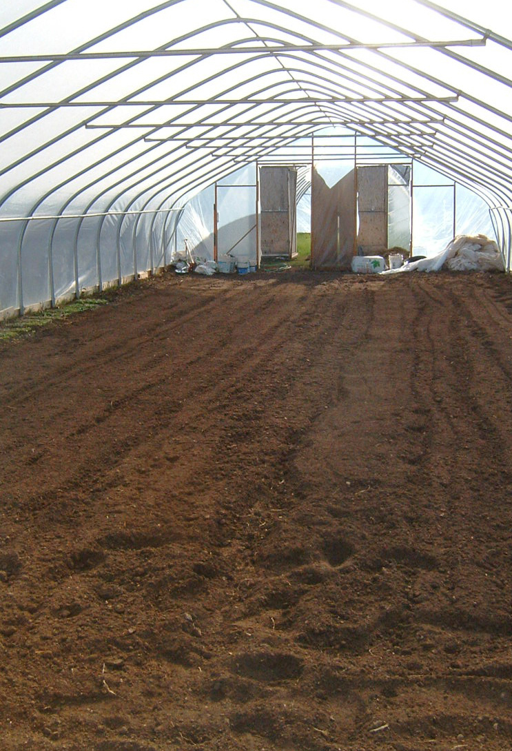 Compost_in_greenhouse_2