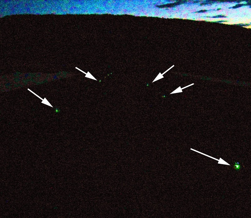 Bug_lights_night